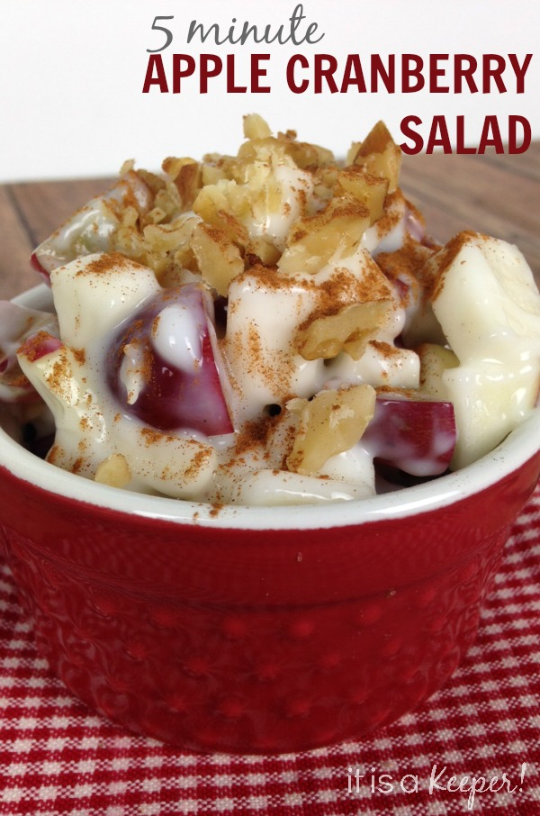 This 5 Minute Apple Cranberry Salad is an easy and healthy snack recipe