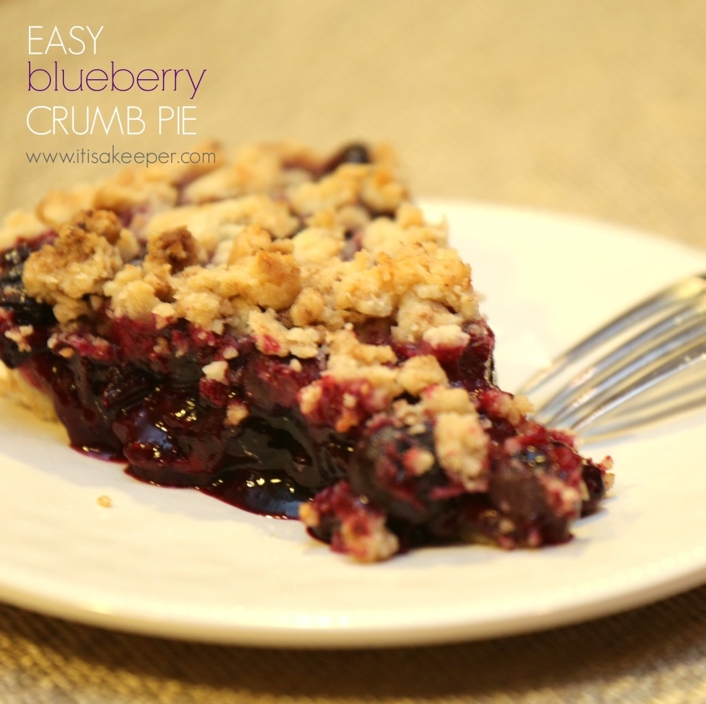 Easy Blueberry Crumb Pie from It's a Keeper