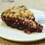 Easy Blueberry Crumb Pie