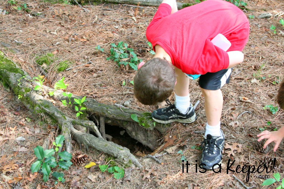 8 Fun Outside Activities to Do with Your Kids SUPPORTING