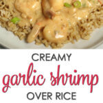 Best Shrimp Rice Recipes