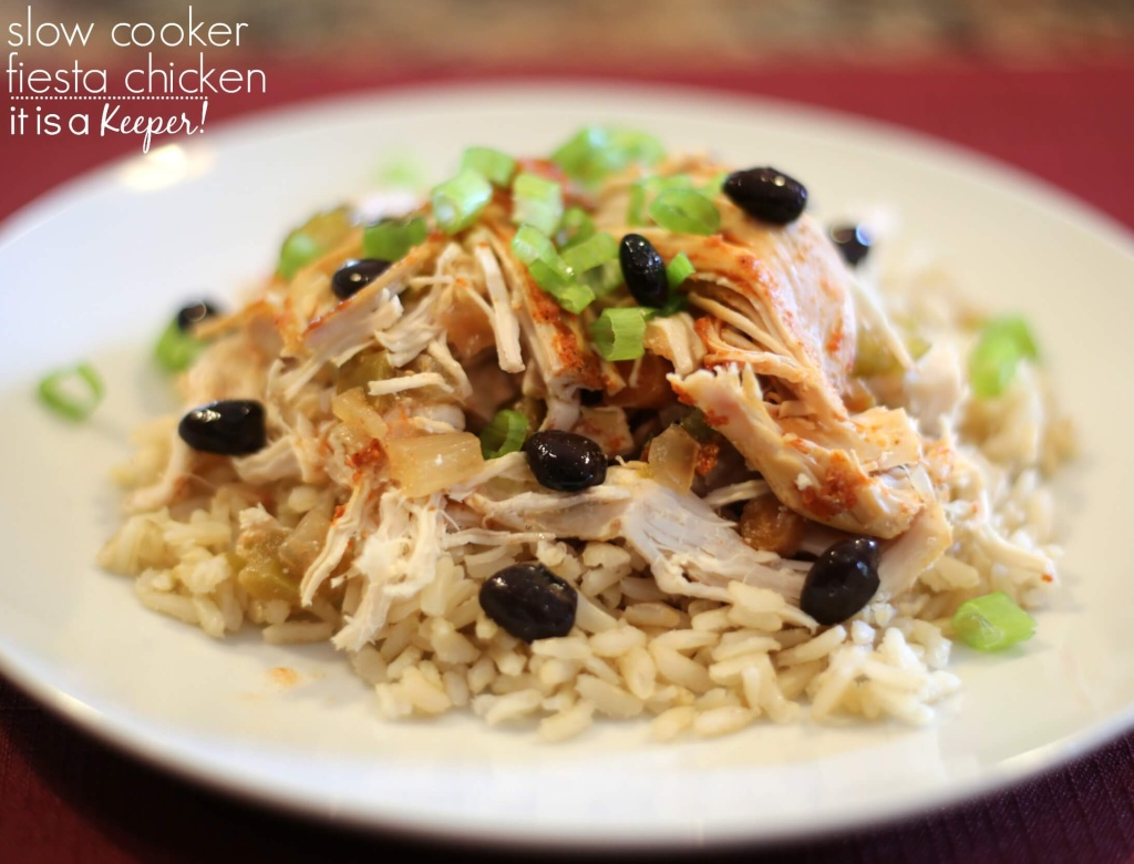Slow Cooker Fiesta Chicken | It Is a Keeper