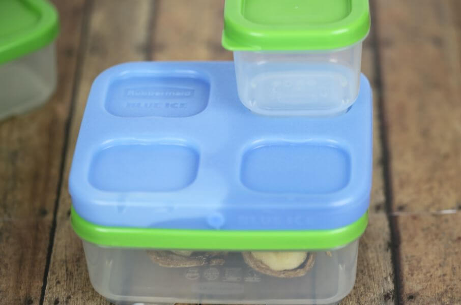 Rubbermaid LunchBlox with banana sushi rolls within it