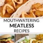 Collection of meatless meals