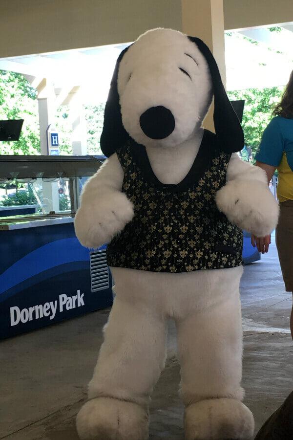 Get my insider tips for visiting Dorney Park Wildwater Kingdom