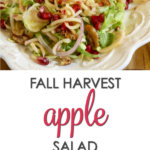 With layers of shaved brussels sprouts, apples, pomegranates, candied walnuts and a pomegranate vinaigrette, this fall harvest salad recipe is a winner!