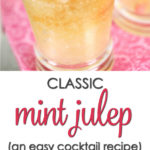 quick mint julep recipe