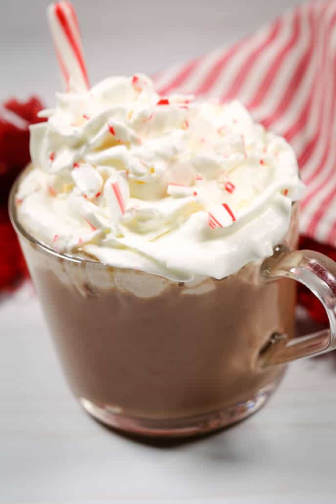 Homemade hot chocolate mix in a mug with whipped cream and a candy cane