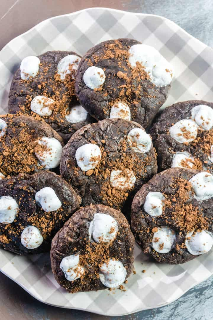 Hot Cocoa cookies sprinkled with cocoa powder on a gray and white plate
