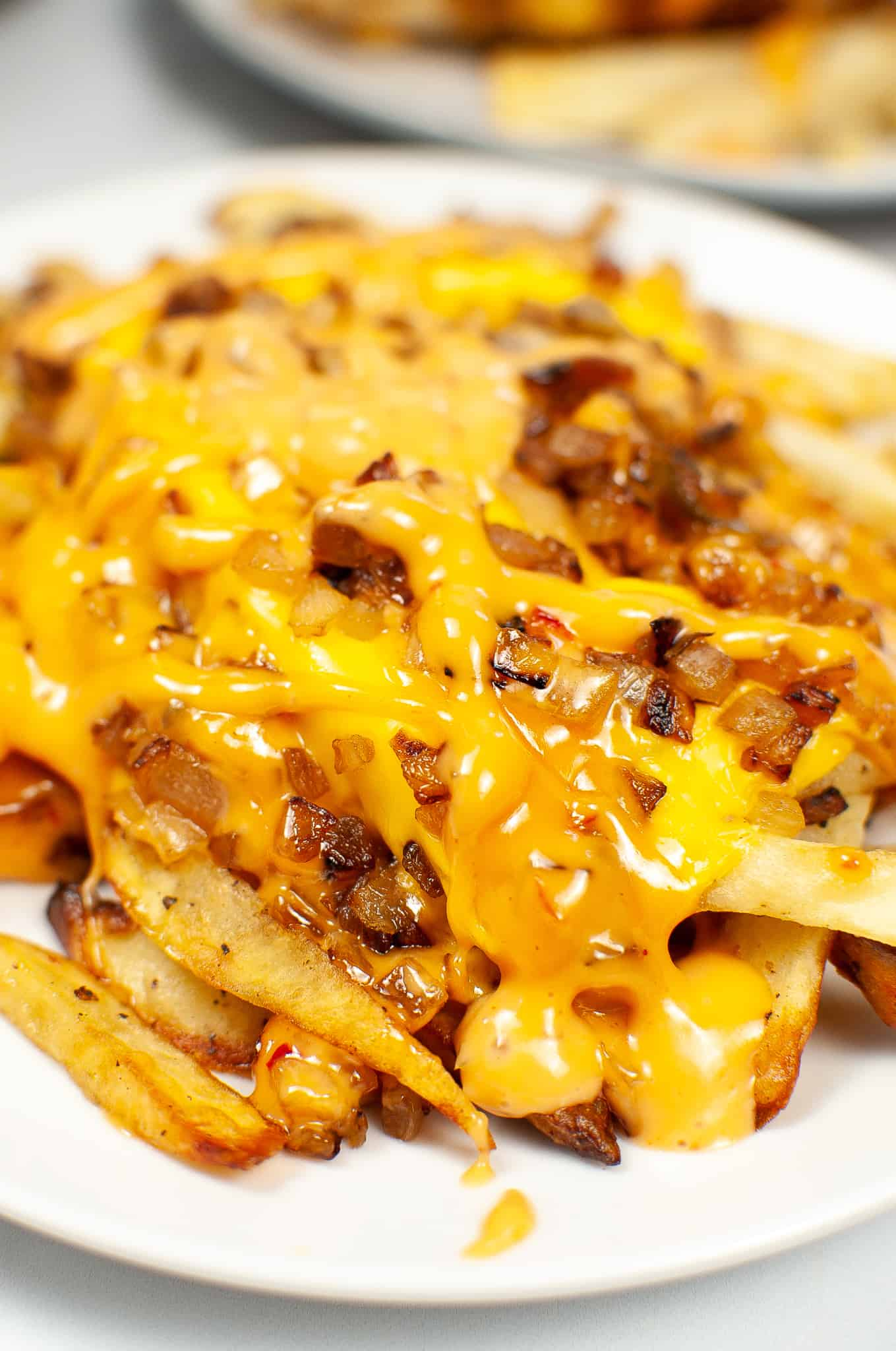 Air Fryer In n out animal fries on a white plate