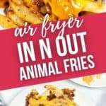 Close up and plate of Air-Fryer-In-n-Out-Animal-Fries