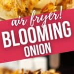 Close up of fried onion and a side view of the blooming onion.