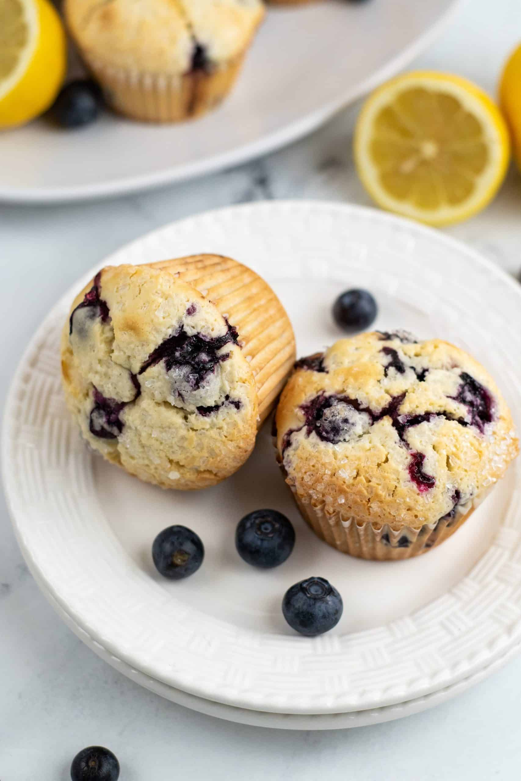 Two blueberry muffins on a white plate with a scattering of blueberries on the top.